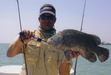Triple Tail Plug and Offshore Gulf Coast Fishing in Southwest Florida